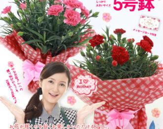 2021今年の母の日はいつ?心のこもったお花をプレゼントしよう